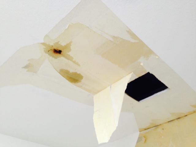 雨漏りは危険!屋根から雨漏りが発生した際の対処すべきポイント